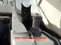 **yachting-direct** yachting_direct_etap26-miniphoto 2